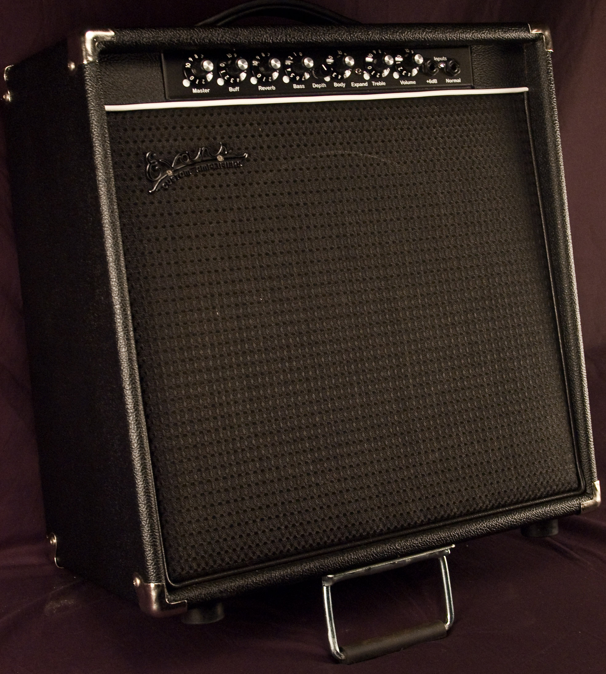 Evans RE/JE200 Guitar Amplifier Combo