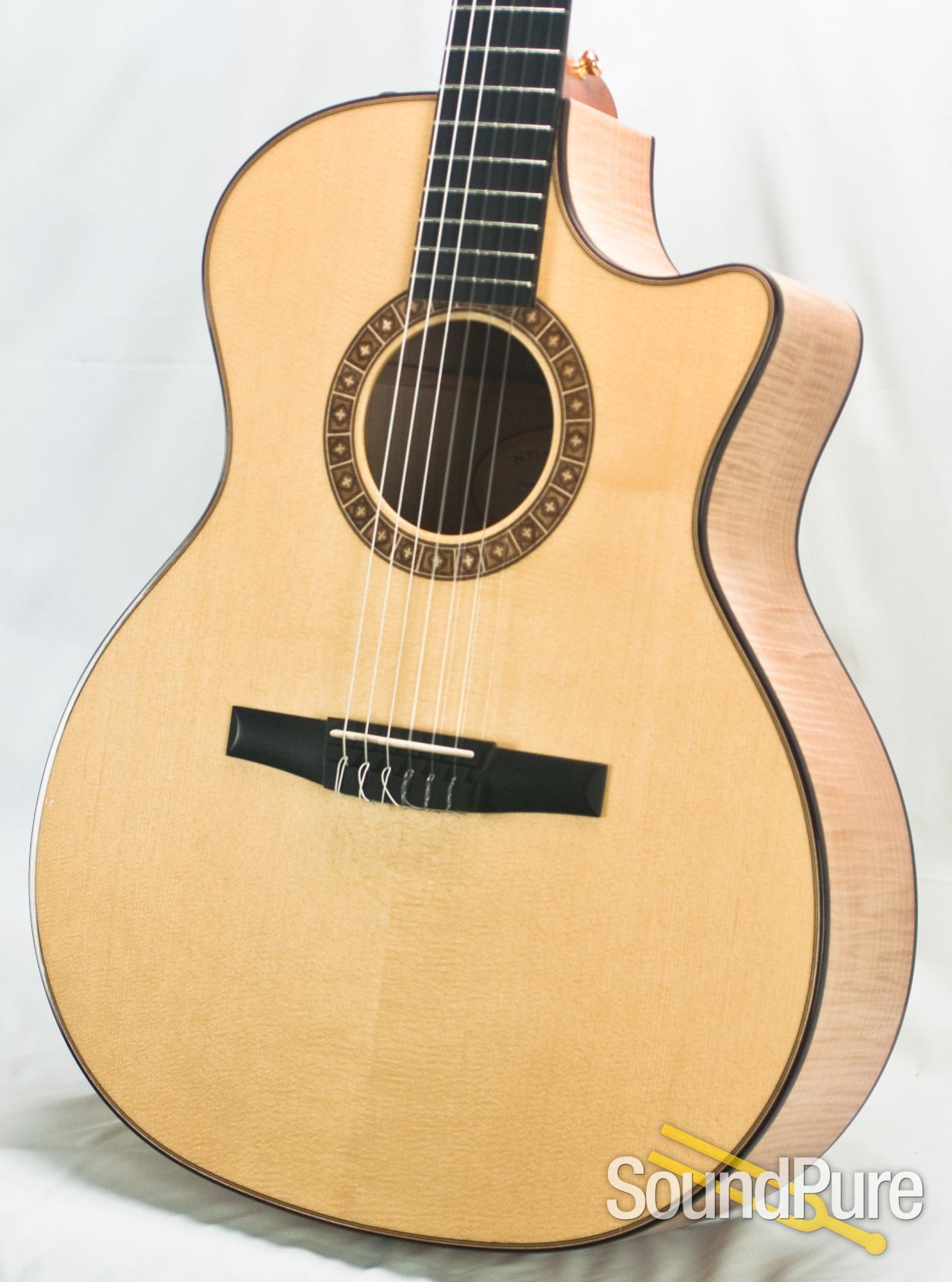taylor ns64ce nylon string acoustic guitar used ebay. Black Bedroom Furniture Sets. Home Design Ideas