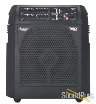 Acoustic Image Ten2 S4 2X10 Combo Amp - Used