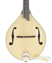 Collings MT 2 Cream Addy/Stained Maple Mandolin #3513 - Used