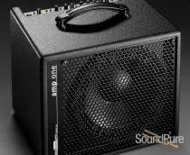 AER Amp One Bass Amplifier Combo