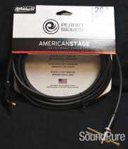 Planet Waves PW-AMSGRA-20 Right Angle Instrument Cable 20'